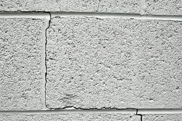termites-don-t-eat-concrete-but-they-can-infiltrate-it-easily